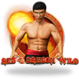 Red Dragon Wild