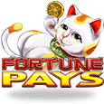 Fortune Pays H5